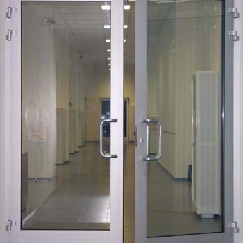 Входная дверь со стеклом и алюминиевым каркасом