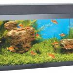 Готовый аквариум 60 литров